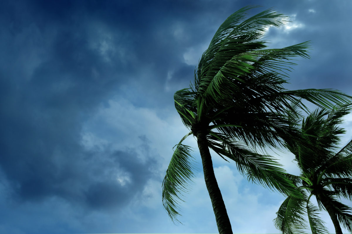 All In Credit Union donates $1,000 to Worldwide Foundation for CUs for Hurricane Dorian Relief
