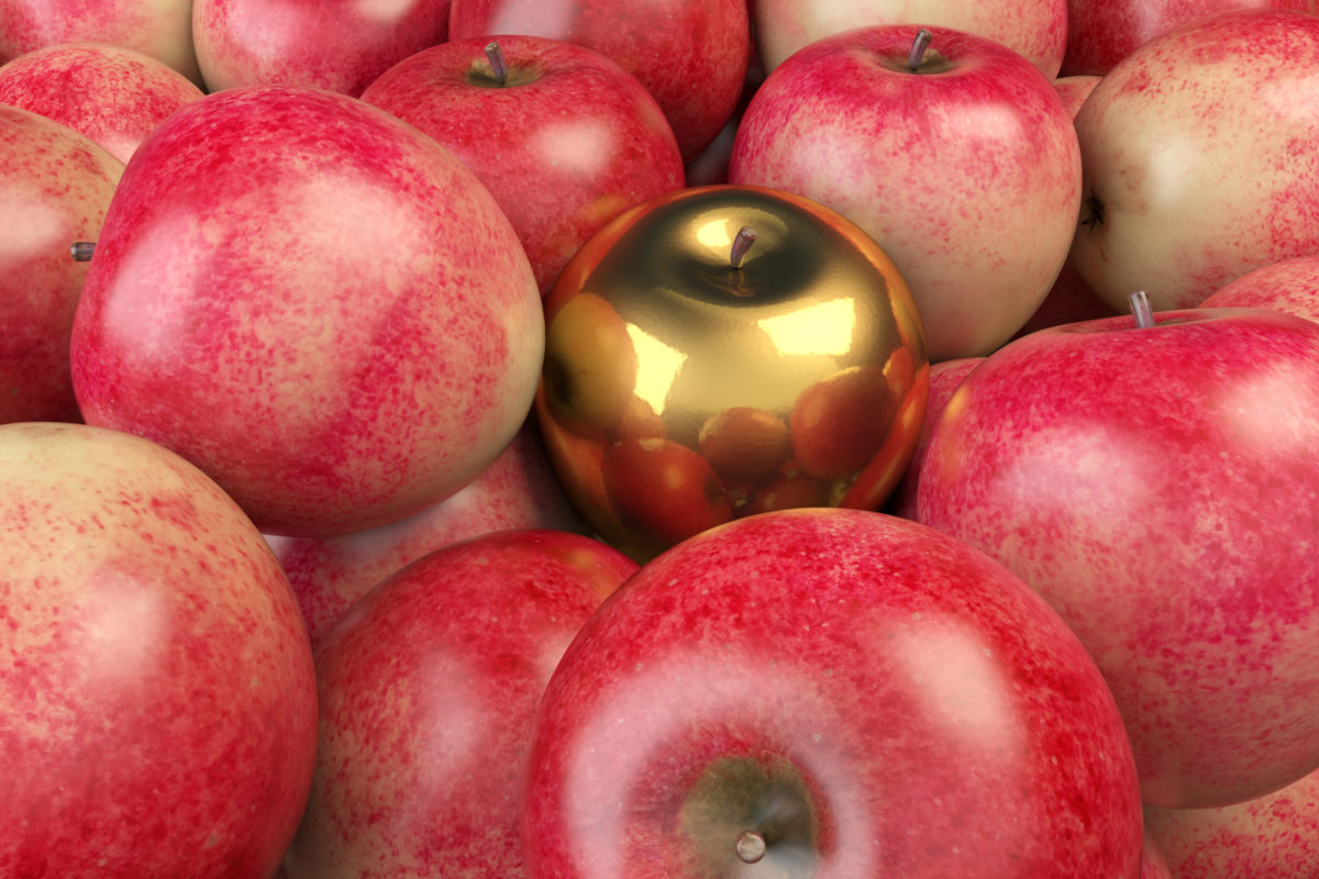 Kinetic Credit Union awards Golden Apple to local 3rd-grade teacher
