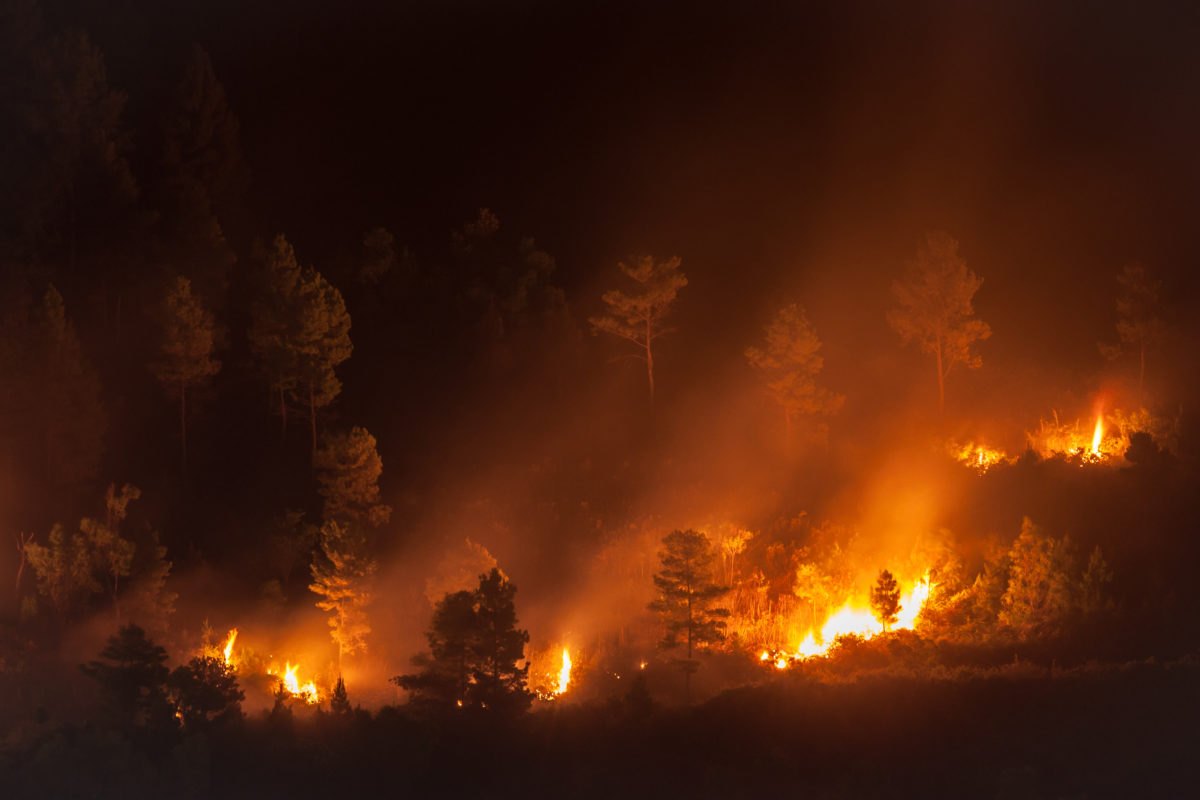 CUNA: California credit unions hold fast in face of 'apocalyptic' wildfires