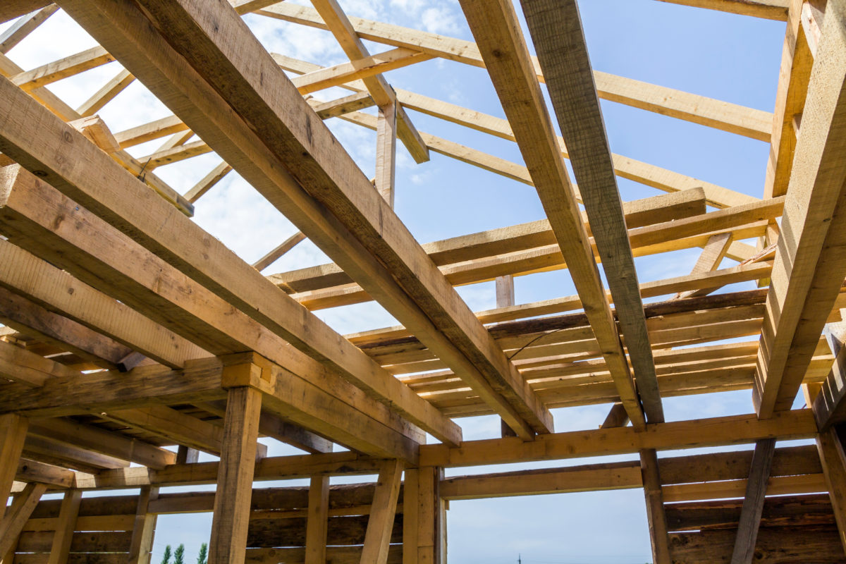 Robins Financial Credit Union lends helping hand for Habitat
